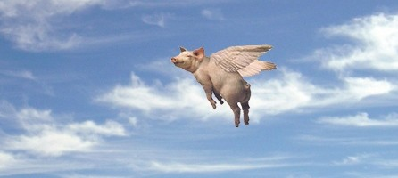 http://bankruptcystrategy.com/wp-content/uploads/2011/09/Look-flying-pigs-51794-e1315601783379.jpg